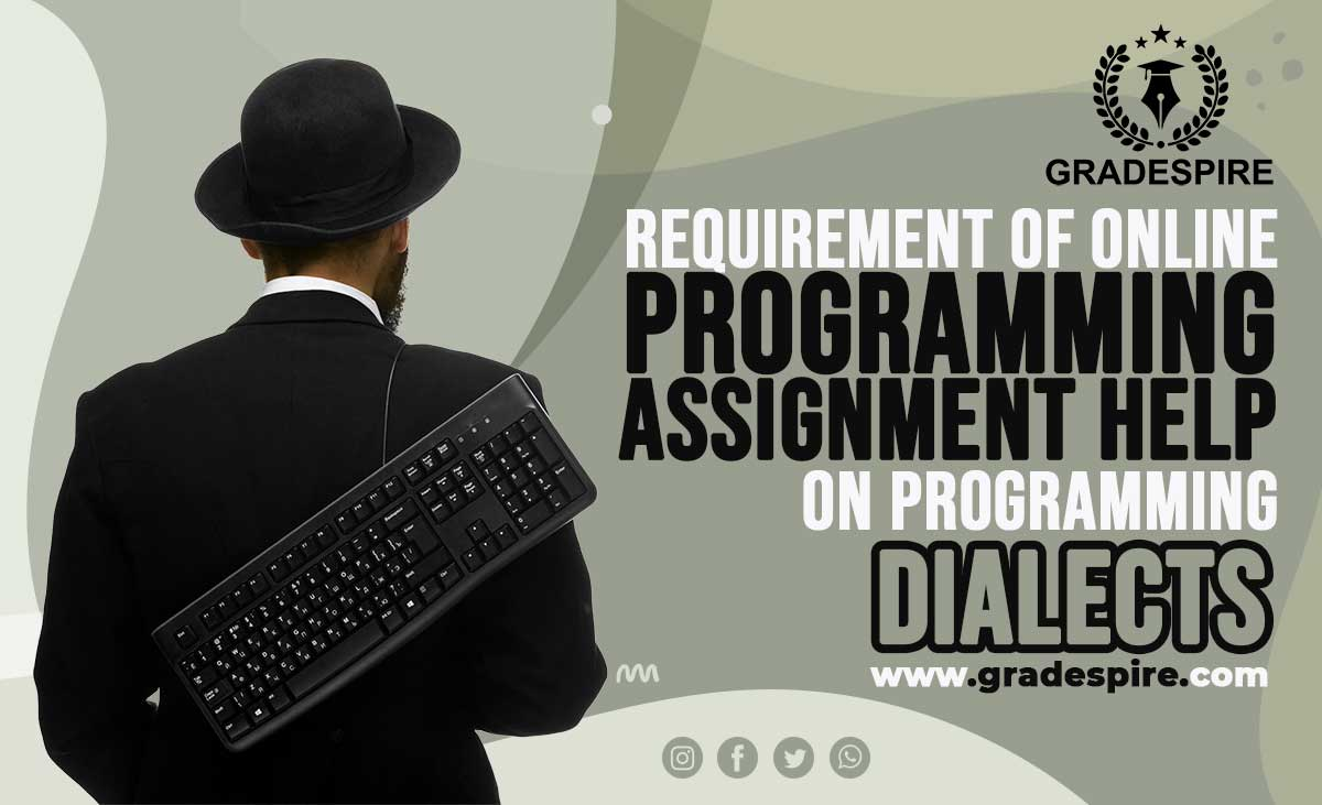 online programming assignment help